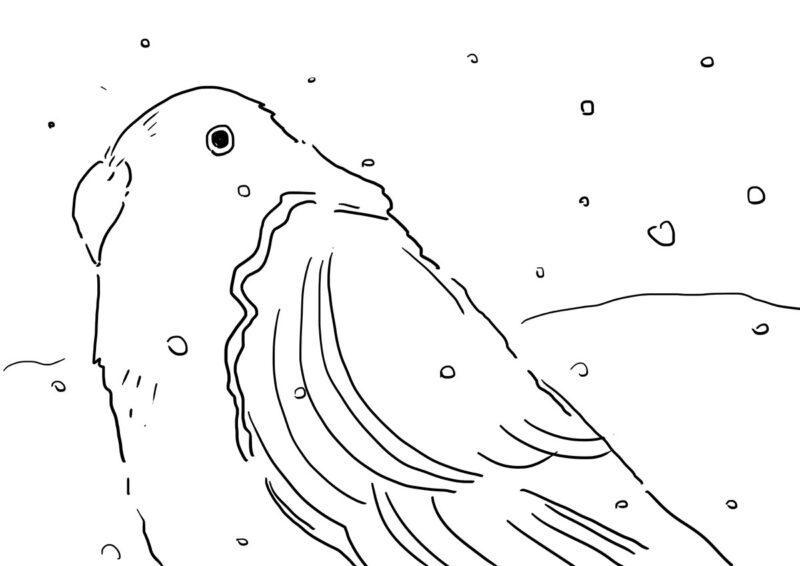 bird20210201